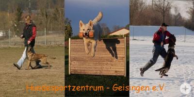 Hsz-Geisingen